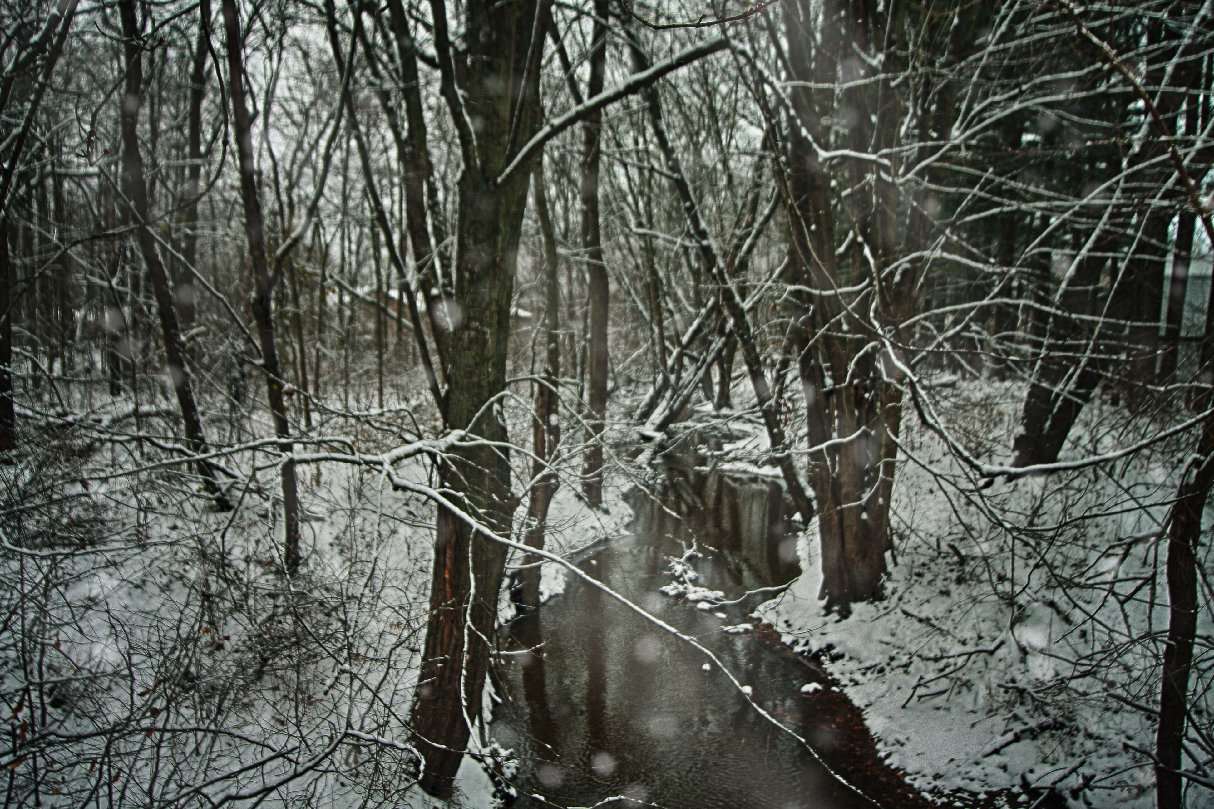 Snowy creek off of County Line Road in Michigan City, Indiana.